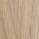 Oak matt lacquered