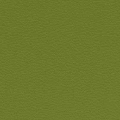 Leder Soerensen Tango / apfelgrün