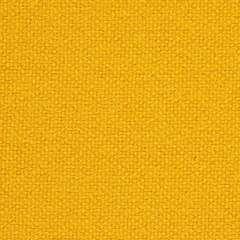 Tonus 201T Dark Yellow